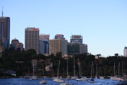 Views of the city buildings from the beach
