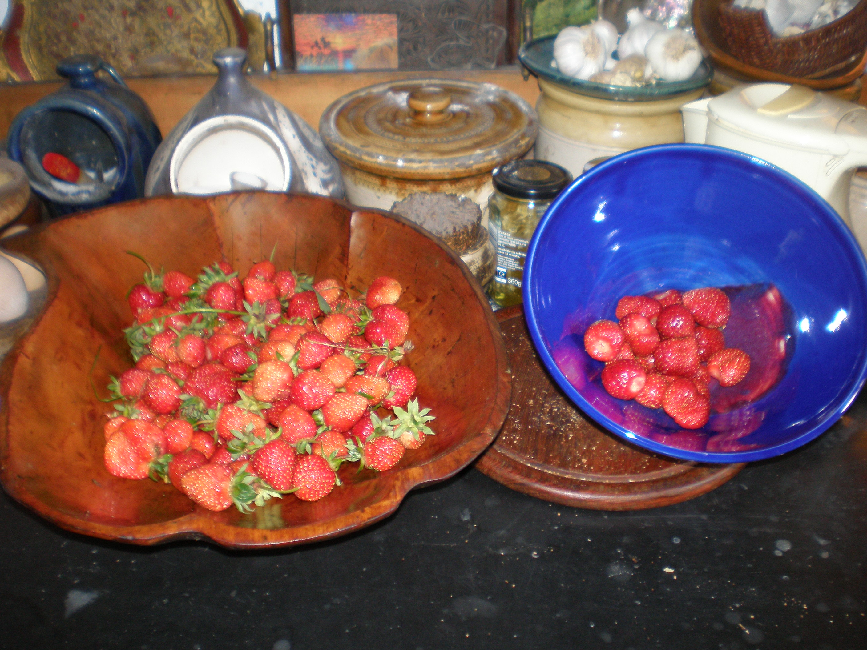 July 2009: best strawberry harvest ever