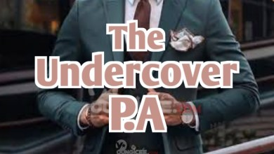 Photo of The Undercover P.A