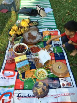 Roots & Shoots members in Singapore celebrate peace with an intercultural picnic. ©Roots & Shoots Singapore