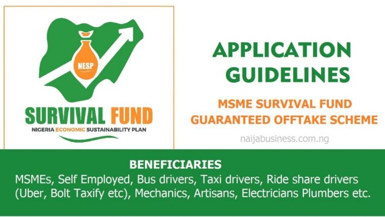 How to apply for the Nigerian Government N75bn MSME survival fund.