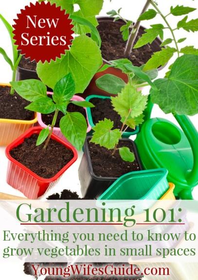 Gardening 101 ~ New Series