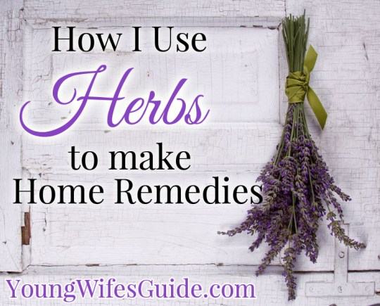 Here is a list of herbs that you can use today to create your own home remedies!