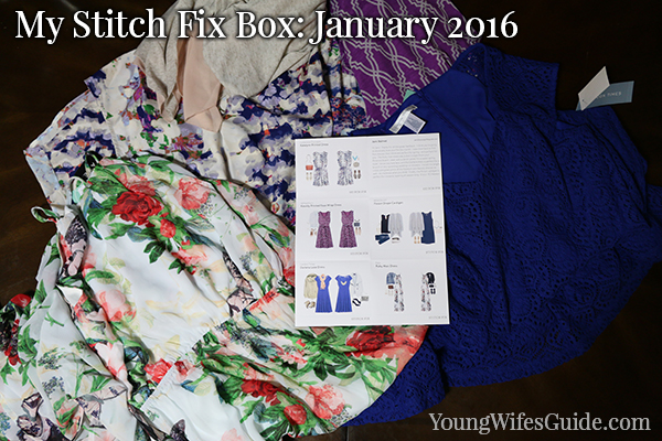 Stitch Fix box 2016