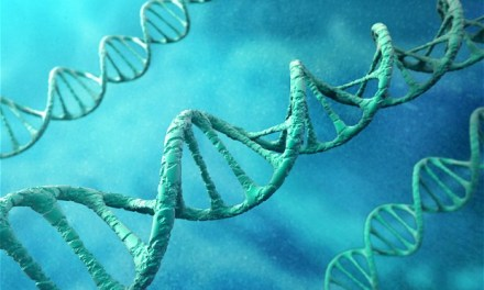 DNA testing to see if you partner has cheated