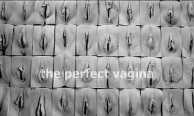 The Perfect Vagina