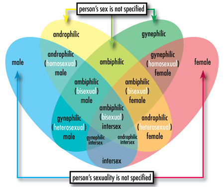 Wetters Glossary of Sex and Gender Terminology