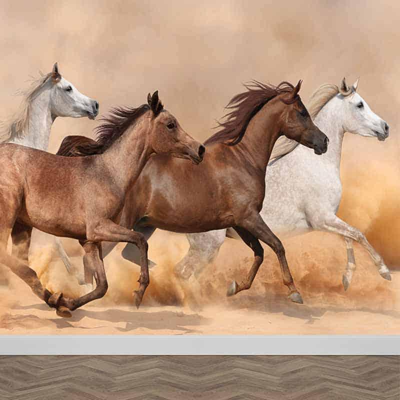 Fotobehang Wilde paarden Speciaal op maat gemaakt bij