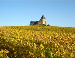 Chavot in Champagne-Ardenne region