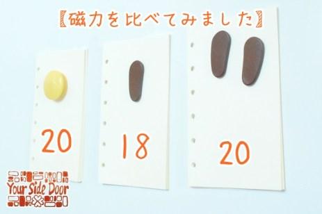 ほぼ3センチのボタン磁石と並ぶ磁力です