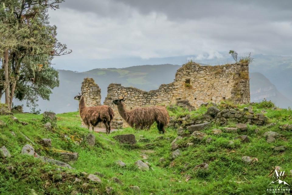 5 Lesser-Known Hiking Trails in Peru
