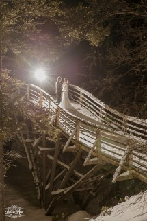 Europe Adventure Wedding Planner