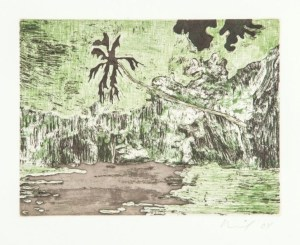 """Peter Doig: """"Black Palm"""", 2004, Etching and aquatint in colors, signed and dated in pencil, from the edition of 119.Printed on wove paper (Zerkall-Bütten, 250g/qm).Total size: 53 x 38 cm, image size: 14,6 x 19,5 cm,published by Griffelkunst, Hamburg."""