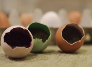 egg planters colored with natural food coloring