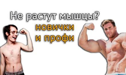 Почему не растут мышцы? О программах профессионалов и тренировках новичков