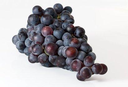 grapes-2151467__340