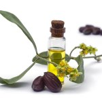 The Oil That Can Fix Your Dry Skin/Oily Skin/Eczema/Acne/Wrinkles & More