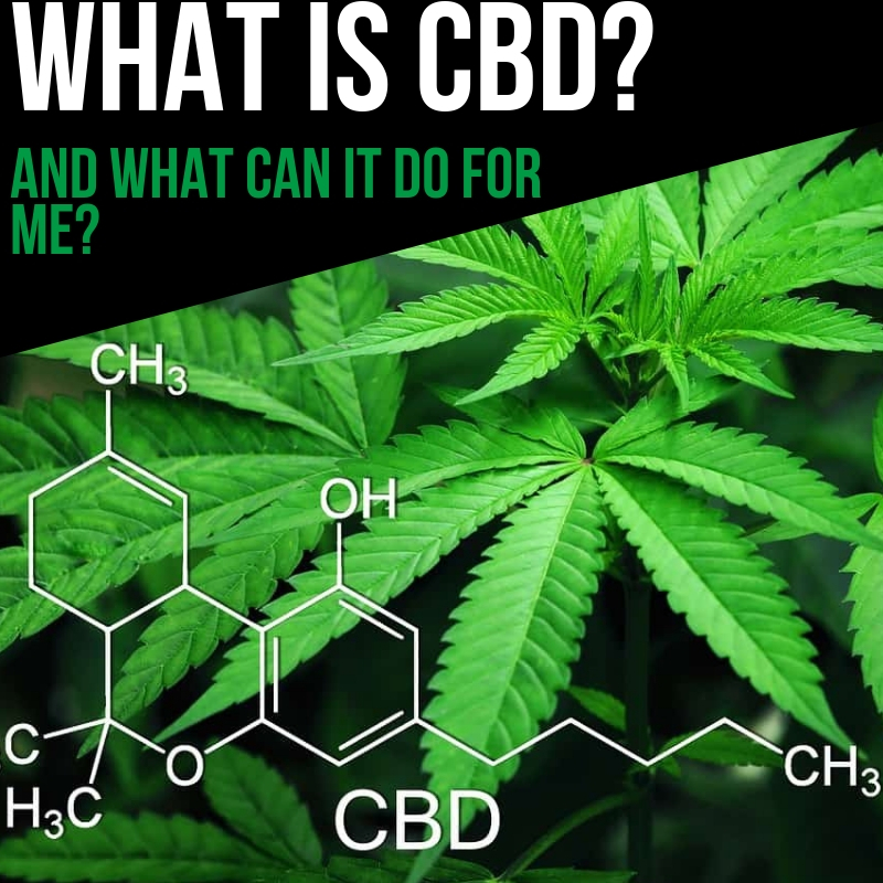 What is CBD Use