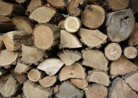 Tips For Properly Storing Firewood- Indianapolis IN- Your Chimney Sweep INC-w800-h597