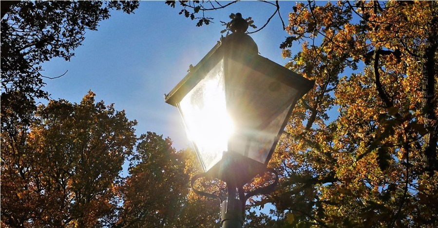 Image of bright street lamp to illustrate drawing clients to your interior design firm for business success