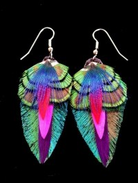 Colorful Feather Earrings  Raynee + color