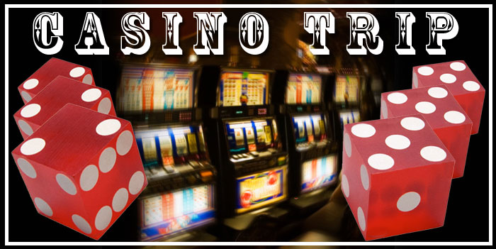 Palm Cove Announcements Hard Rock Casino Trip Palm