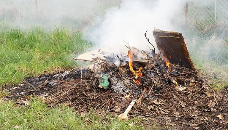 Glade Burn Change on January Agenda for Adoption