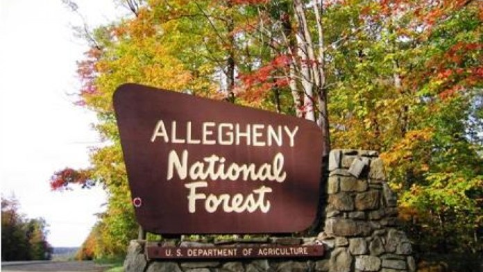 Public Comments Sought on Recreation Sites in Allegheny National Forest