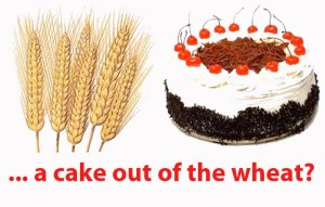 He that will have a cake out of the wheat must tarry the grinding