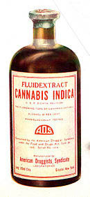 cannabis sativa used extensively in the XIX cemtury as a medicine