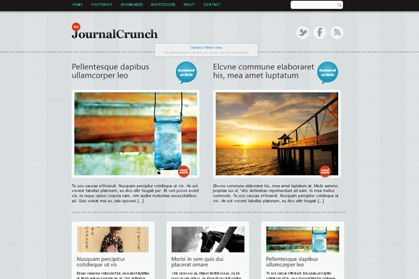 JournalCrunch WP theme