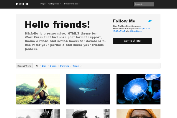 Mixfolio wp theme