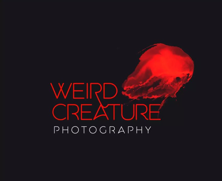 aquatico-best-free-logo-fonts-080