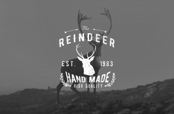 bernier-best-free-logo-fonts-087