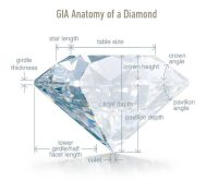 What are the Perfect Diamond Cut Proportions for Maximum ...