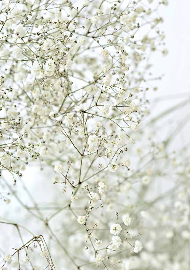 babys breath flower garland diy