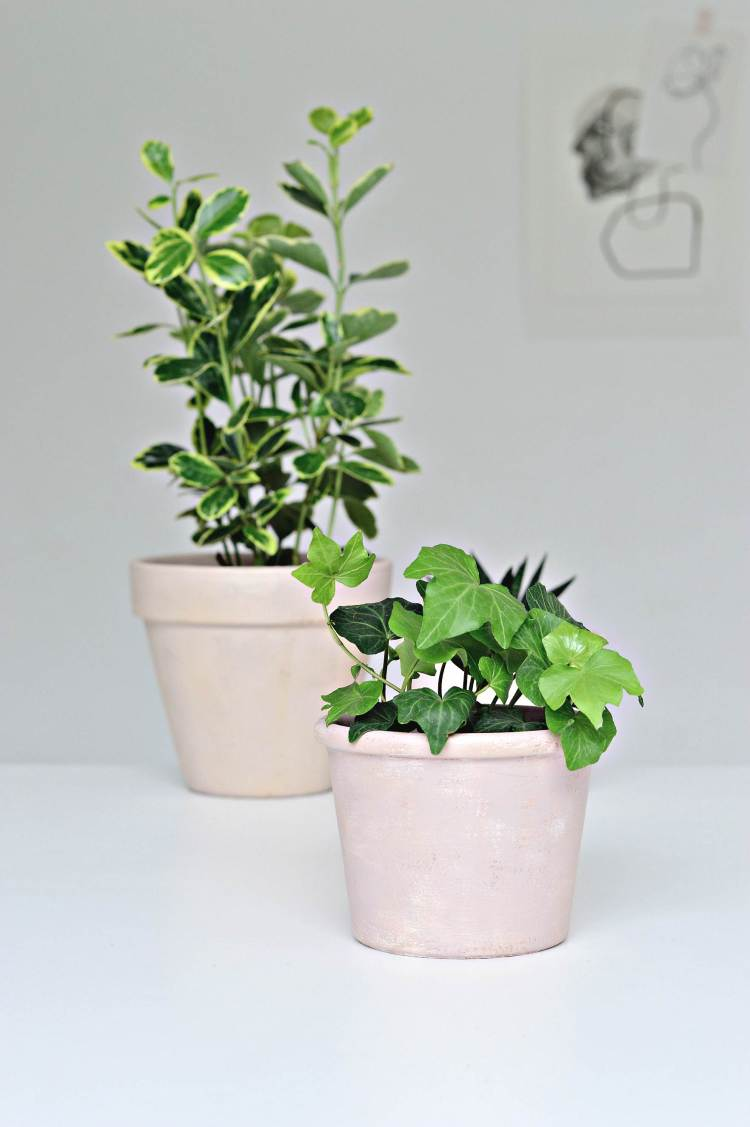 age terracotta pots