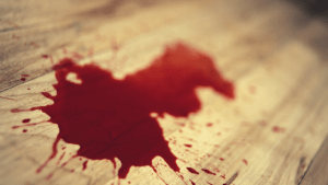 spatter of blood on a wooden floor