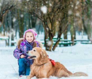 young girl in the snow with a golden retriever