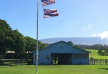 The barn at Haku Baldwin Center