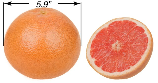 US Dept. Of Health: 'Never Stick Anything Larger than a Grapefruit Up Your Butt'
