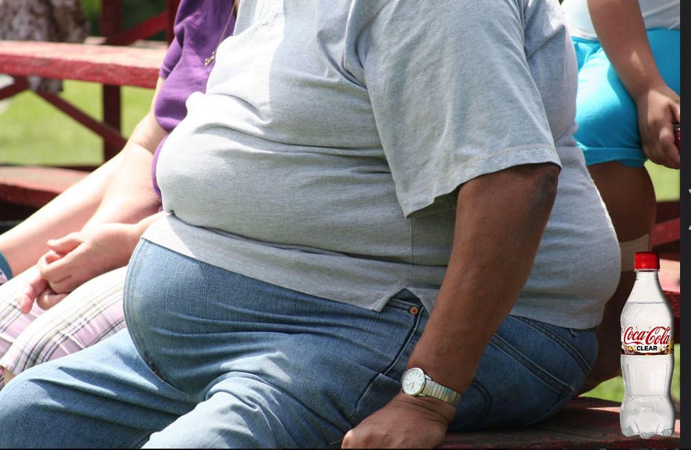 Japan Resumes Hunting of Overweight Citizens After 30-Year Ban