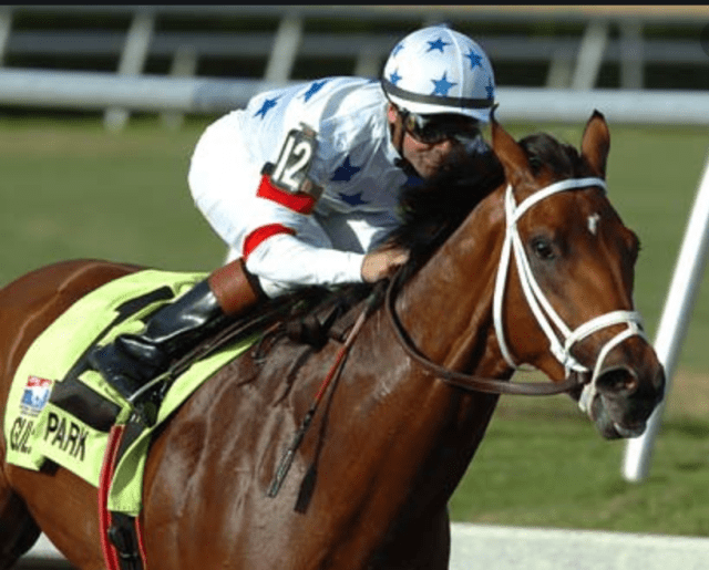 Stunning: 100% of people can't identify these winning Kentucky Derby horses