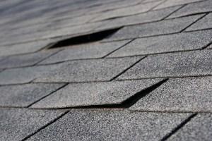 detroit roof company
