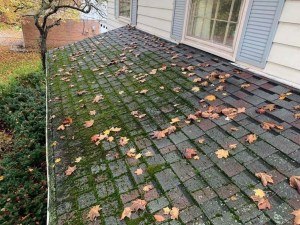 detroit roofing company