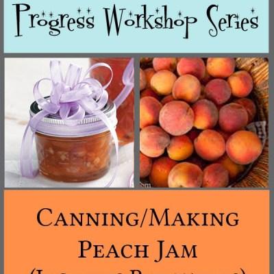 Young Women Personal Progress Workshop Series: Making Jam