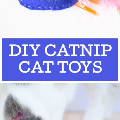 DIY Catnip Cat Toys