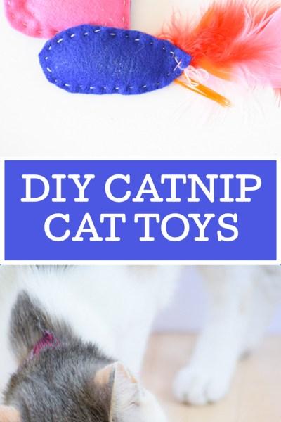 DIY Catnip Cat Toys