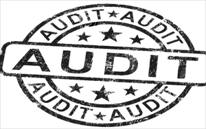 Forms used for e-filing of section 44AB tax audit report