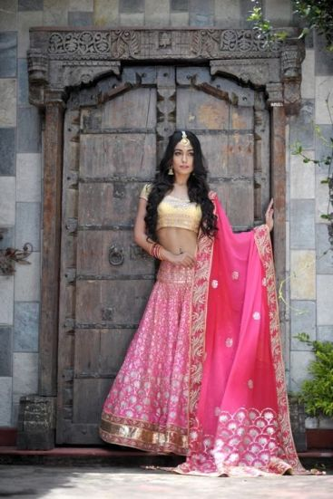 Luxury Colors indian lehenga Dresses